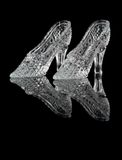 Woman crystal shoes Stock Photos