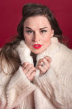 Woman Cuddles in Fur Coat Stock Photography