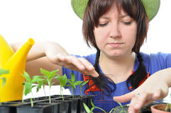 Woman cultivation garden isolated Stock Photography