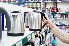Woman chooses an electric kettle Stock Image