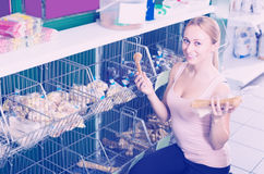 Woman customer looking different treats for dogs Royalty Free Stock Photo