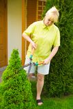 Woman cut bush clippers Royalty Free Stock Photography