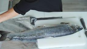 Woman cut salmon into steak stock video