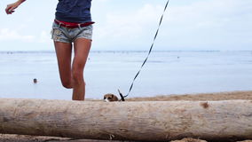 Woman and cute beagle dog playing on beach of tropical island Bali, Sanur, Indonesia. Woman and cute Beagle dog playing on Beach of tropical island Bali, Sanur stock footage