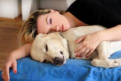 Woman with cute dogs at home. Handsome girl resting and sleeping with her dog in bed in bedroom. Owner and dog sleeping in sofa. Yellow labrador retriever stock image