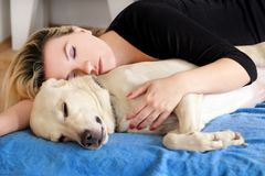 Woman with cute dogs at home. Handsome girl resting and sleeping with her dog in bed in bedroom. Owner and dog sleeping in sofa. Yellow labrador retriever stock photos