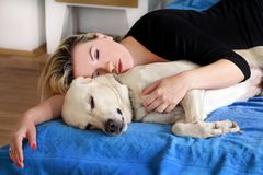 Woman with cute dogs at home. Handsome girl resting and sleeping with her dog in bed in bedroom. Owner and dog sleeping in sofa. Yellow labrador retriever stock images