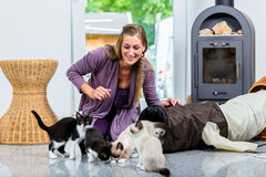 Woman with cute kittens and playing tunnel on floor Stock Images