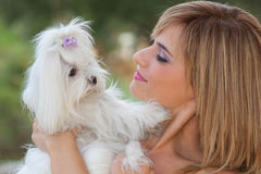 Woman with cute small dog Stock Image