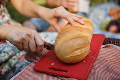 The woman cuts bread on wooden board. The woman cuts bread on plastic board on nature stock photography