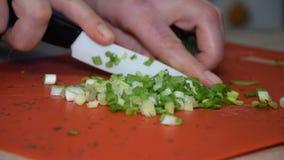 Woman cuts green onions for salad.
