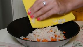 Woman cuts onions on a cutting board and pours it stock video