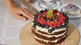 Female Hand Cutting Birthday Cake With Knife Birthday Party Dessert