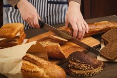 Woman cutting bread on wooden board. Unrecognizable female chef preparing healthy sandwiches, e view, copy space Royalty Free Stock Image