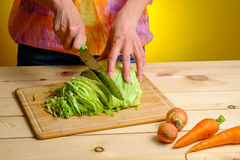 Woman cutting cabbage on wooden board Royalty Free Stock Image