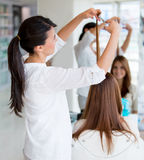 Woman cutting clients hair Stock Images