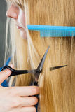 Woman cutting down smoothy hair. Stock Photo