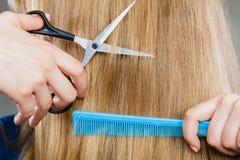 Woman cutting down smoothy hair. Stock Photos