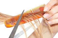 Woman cutting hair Stock Photo