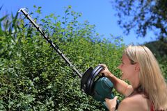 Woman cutting a  hedge Stock Photos