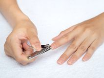 Woman cutting nails using nail clipper on white background. heal stock photography