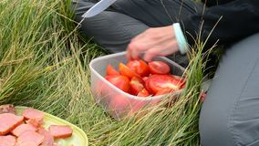 Woman cutting red tomatoes during a picnic in nature stock video footage