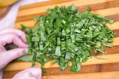 Woman cutting sorrel by knife on the wooden cooking desk. Woman hands cutting sorrel by knife on the wooden cooking desk stock image