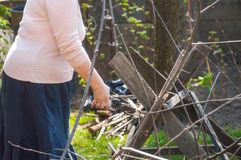 Woman cutting tree branches in the garden Stock Photos