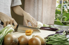 Woman cutting vegetables Stock Photography