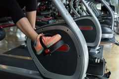 Woman cycling burn fat on bicycle cardio machine in fitness gym Stock Photos