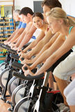 Woman Cycling In Spinning Class. In Gym Royalty Free Stock Image
