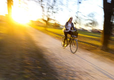 Woman cycling at sunset. Royalty Free Stock Photography