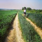 Woman cycling wheat field Stock Image