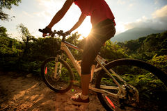 Woman cyclist cycling on summer forest Stock Photos