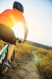 Woman cyclist with the glare from the setting sun. Stock Images