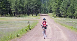 A Woman Cyclist Rides a Forest Road Stock Photo