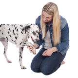 Woman with dalmatian dog Stock Images