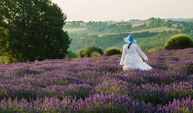 Woman dancing in lavender field Stock Photography