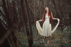Woman dancing in secret forest Royalty Free Stock Photos