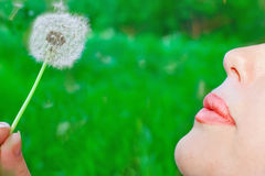 Woman with dandelion. On the nature background Royalty Free Stock Photography