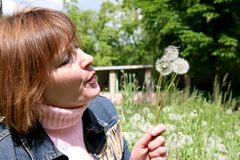 Woman and dandelion. Woman in the middle of dandelion field blow to someone dandelions Royalty Free Stock Images