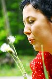 Woman with dandelion Stock Photos