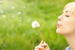 Woman with dandelion Royalty Free Stock Photos