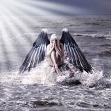 Woman with dark angel wings Royalty Free Stock Images