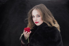 Woman in a dark dress with a red rose in winter Stock Image