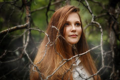 Woman in Dark Forest, Looking Away Stock Photography