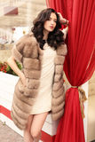 Woman with dark hair in elegant clothes and luxurious fur coat. Fashion outdoor photo of gorgeous sensual woman with dark hair in elegant clothes and luxurious royalty free stock photography