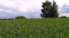 Woman with dark jacket go through wide crop field in summer Royalty Free Stock Photography