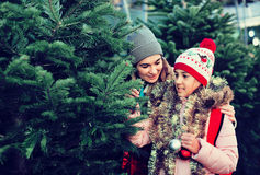 Woman with daughter buying Christmas tree in market Stock Photo