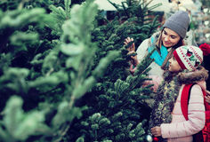 Woman with daughter buying Christmas tree in market. Pleasant women with daughter buying Christmas tree in market. Focus on woman royalty free stock photo